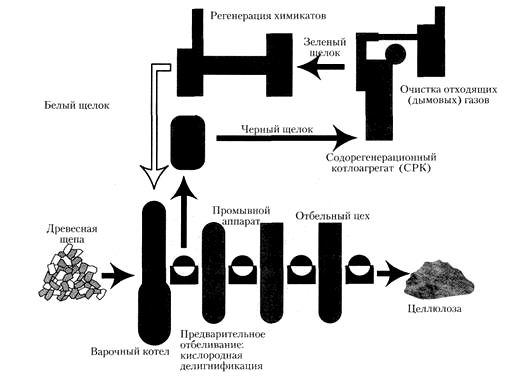 Схема производства сульфатной